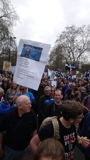 Sussex For Europe and Wealden LibDems in the People's Vote March crowds