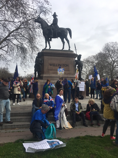 Wealden LibDems and Sussex For Europe just before the start of the march