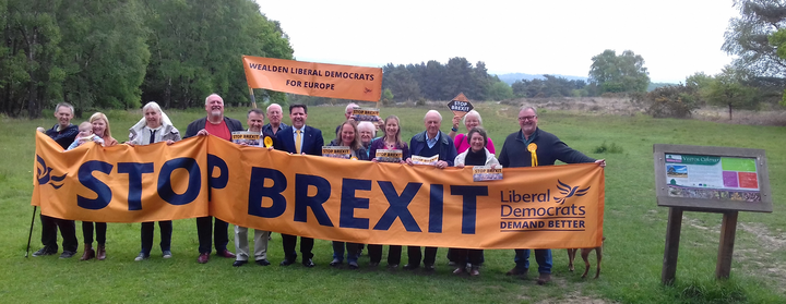 MEP candidate Antony Hook & Wealden LibDems at Ashdown Forest May 18 2019
