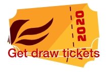 Lib Dem Christmas Draw 2020 tickets